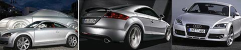 auditt_100406_collage.jpg