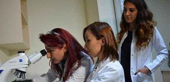 Türkei Forschung und Entwicklung