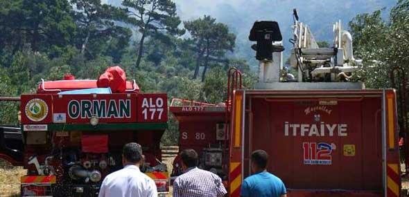 Türkei Brand Rotkiefernwald_260619