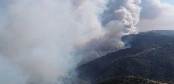 Türkei kämpft gegen die Waldbrände