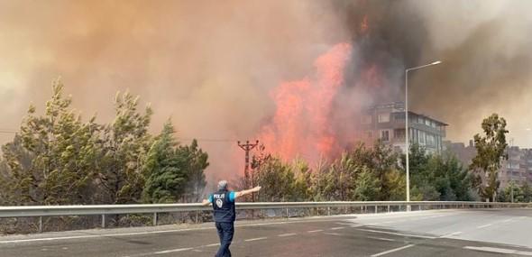 Türkei Waldbrand in Hatay