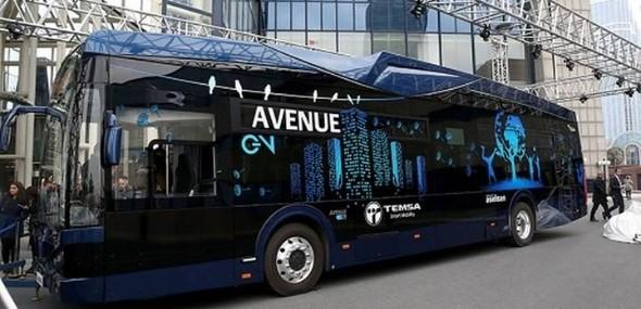 Türkeis Elektrobus Avenue